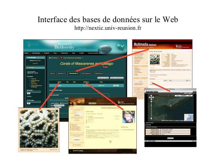 Interface des bases de données sur le Web http://nextic.univ-reunion.fr
