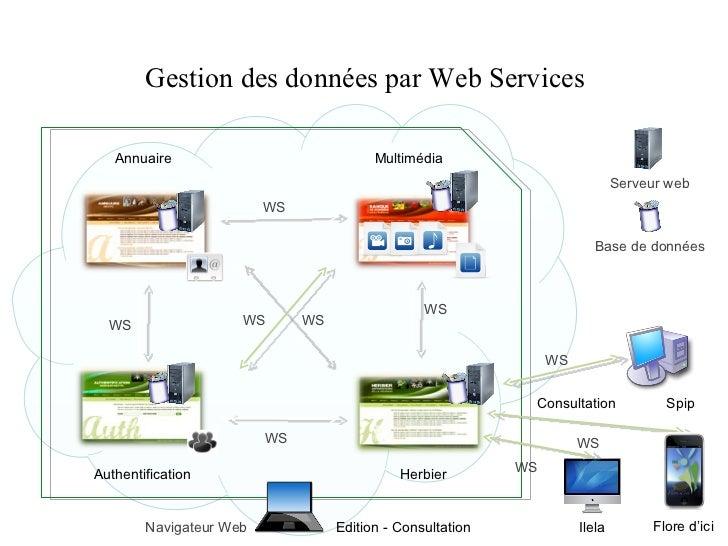 Gestion des données par Web Services Annuaire WS WS WS WS WS Herbier Authentification Multimédia Base de données Navigateu...