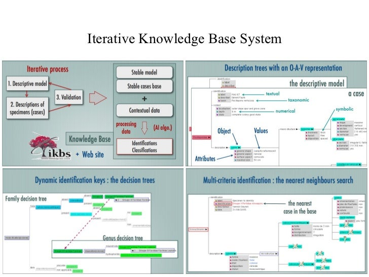 Iterative Knowledge Base System