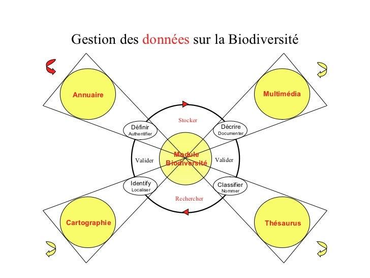 Gestion des  données  sur la Biodiversité Annuaire Définir Authentifier Multimédia Décrire Documenter Classifier Nommer Th...