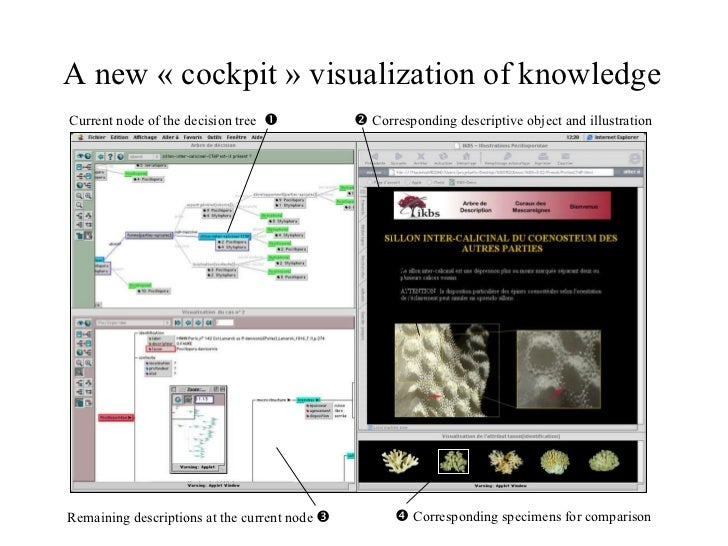 A new «cockpit» visualization of knowledge    Corresponding descriptive object and illustration Current node of the dec...