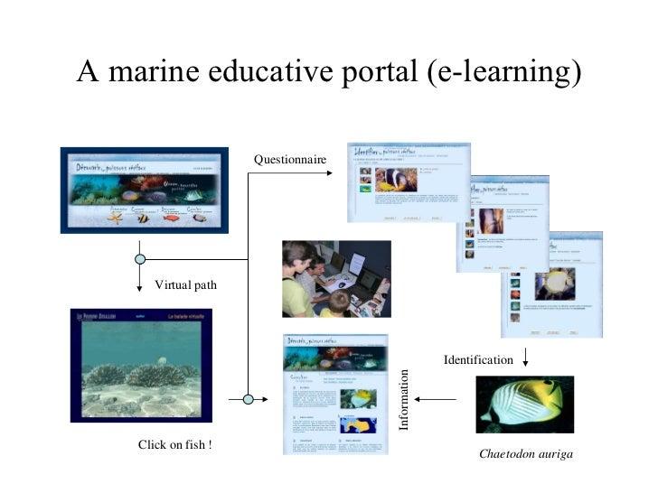 A marine educative portal (e-learning) Chaetodon auriga Virtual path Click on fish ! Identification Questionnaire Informat...