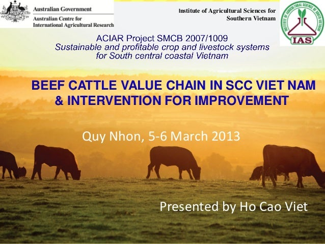 BEEF CATTLE VALUE CHAIN IN SCC VIET NAM & INTERVENTION FOR IMPROVEMENT Presented by Ho Cao Viet Quy Nhon, 5-6 March 2013 I...
