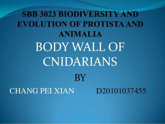 BODY WALL OF      CNIDARIANS             BYCHANG PEI XIAN    D20101037455