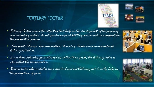 importance of primary secondary and tertiary sectors