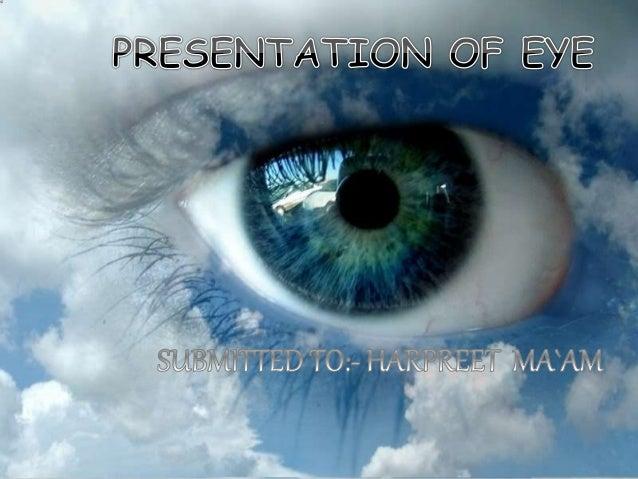 Understanding Vision Cornea Lens Focal Point
