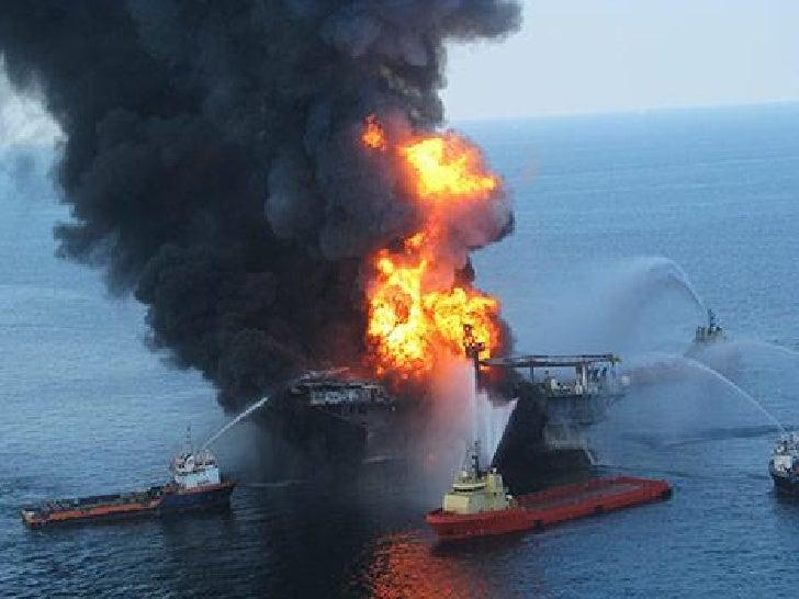 Birds Of the Oil Spill