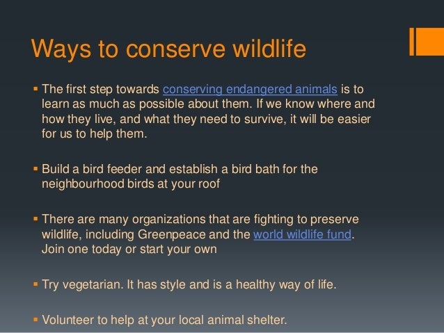 animal conservation methods