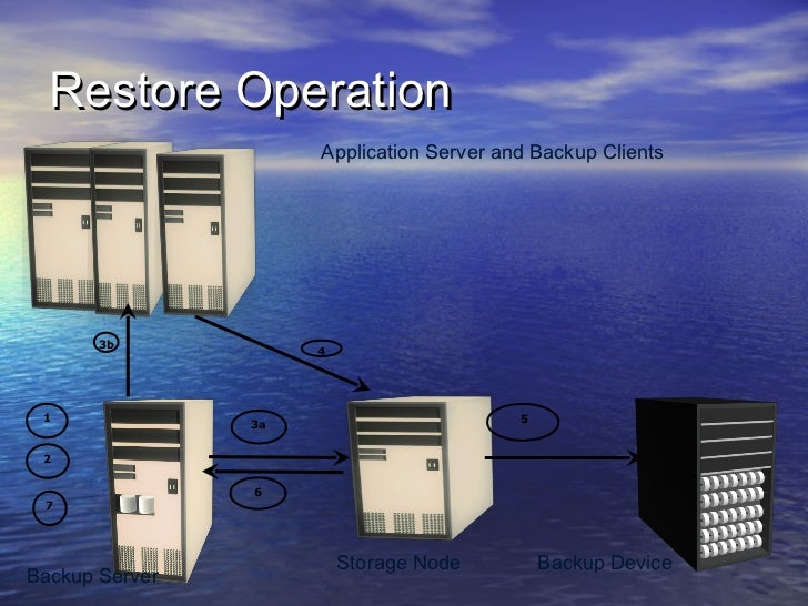 Restore Operation                     Application Server and Backup Clients       3b                     4 1              ...
