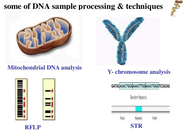 an analysis of the significance of the human genome project Understanding the human genome project — a fact in the human genome individualized analysis based on each person's genome will lead to a powerful form.
