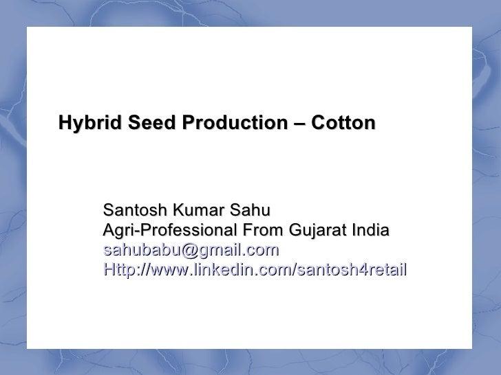 Hybrid Seed Production – Cotton    Santosh Kumar Sahu    Agri-Professional From Gujarat India    sahubabu@gmail.com    Htt...