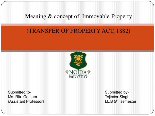 meaning of movable property