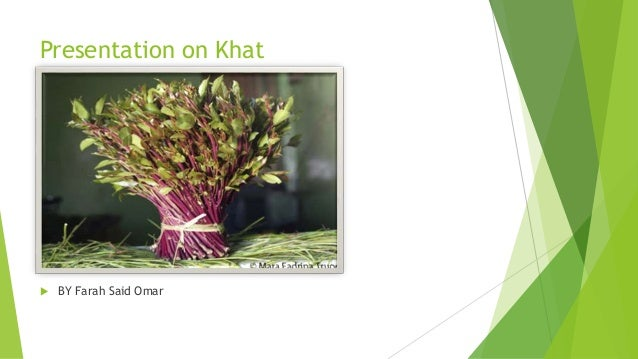 Presentation on khat (1)