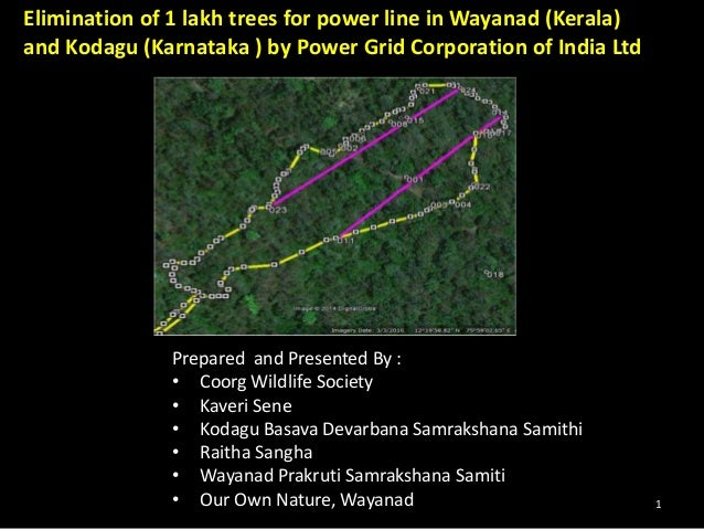 Elimination of 1 lakh trees for power line in Wayanad (Kerala)  and Kodagu (Karnataka ) by Power Grid Corporation of India...