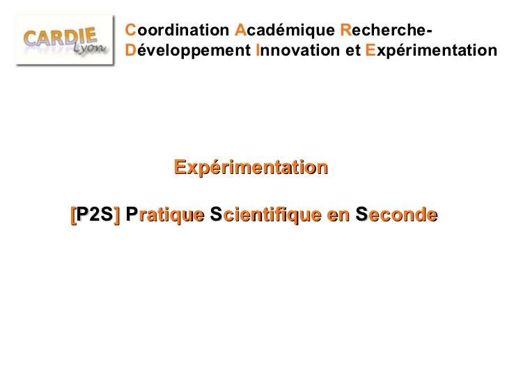 C oordination  A cadémique  R echerche- D éveloppement  I nnovation et  E xpérimentation Expérimentation  [ P2S ]  P ratiq...