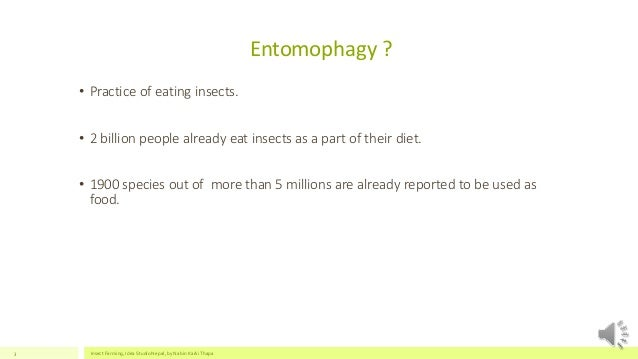Prospects of Insect Farming Slide 3