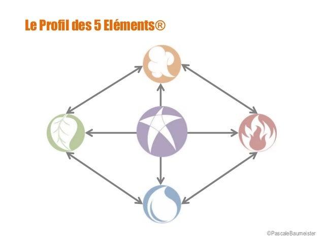 """Présentation """"Profil des 5 Éléments"""" Slide 2"""