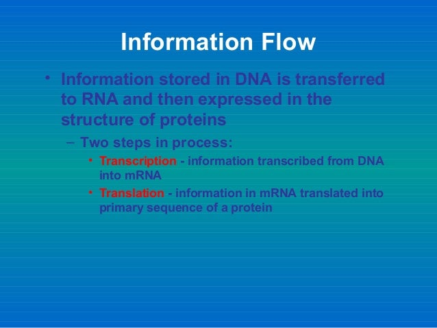 an analysis of the process by which genetic information from the dna stored in the nucleus The genetic information stored in the nucleus of a cell needs to be delivered to  the  the process of dna transcription is very similar to that of dna   international journal of analytical chemistry doi: 101155/2016/7436849.