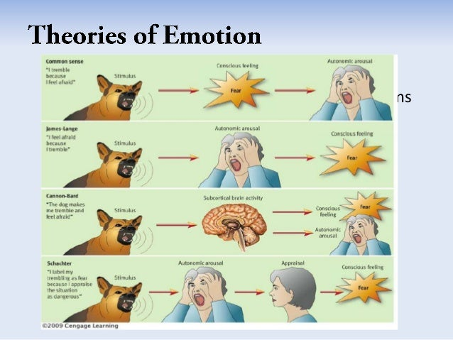 emotion and its theories Emotion: emotion is a complex experience of consciousness, sensation, and behavior reflecting the personal significance of a thing, event, or state of affairs.