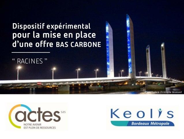"""Dispositif expérimental pour la mise en place d'une offre BAS CARBONE """" RACINES """" © crédit photo Christophe Goussard"""