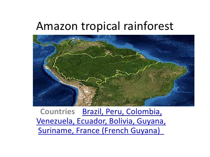 Amazon tropical rainforest Countries Brazil, Peru, Colombia,Venezuela, Ecuador, Bolivia, Guyana,Suriname, France (French G...