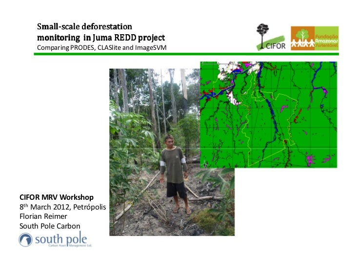 Small-     Small-scale deforestation     monitoring in Juma REDD project     Comparing PRODES, CLASlite and ImageSVMCIFOR ...