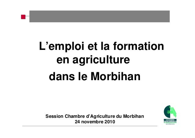 L'emploi et la formation en agriculture dans le Morbihan Session Chambre d'Agriculture du Morbihan 24 novembre 2010