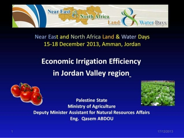 T6: Economic Irrigation Efficiency in Jordan Valley Region