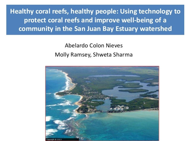 Healthy coral reefs, healthy people: Using technology to protect coral reefs and improve well-being of a community in the ...