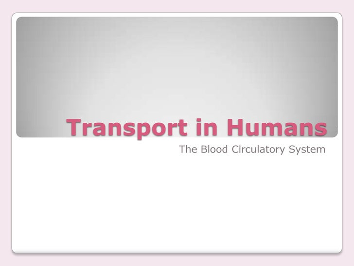 Transport in Humans<br />The Blood Circulatory System<br />