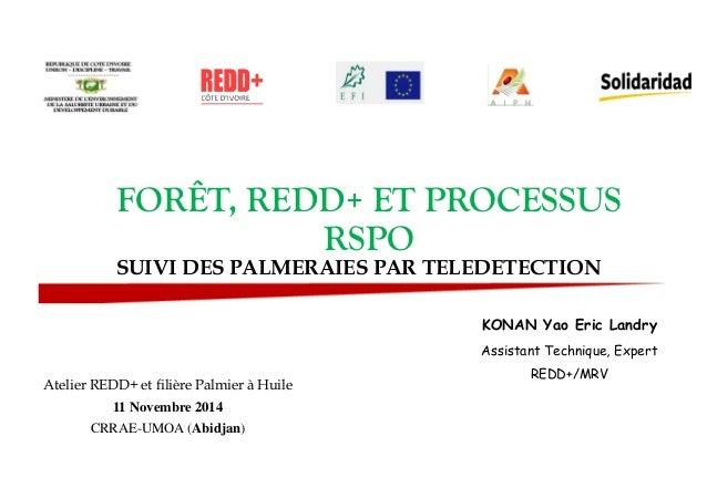 FORÊT, REDD+ ET PROCESSUS  RSPO  SUIVI DES PALMERAIES PAR TELEDETECTION  KONAN Yao Eric Landry  Assistant Technique, Exper...