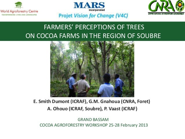 FARMERS' PERCEPTIONS OF TREES ON COCOA FARMS IN THE REGION OF SOUBRE  E. Smith Dumont (ICRAF), G.M. Gnahoua (CNRA, Foret) ...
