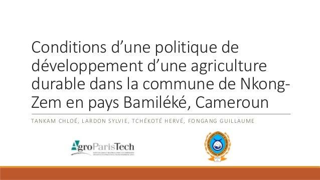 Conditions d'une politique de développement d'une agriculture durable dans la commune de Nkong- Zem en pays Bamiléké, Came...