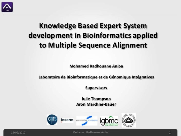 Knowledge Based Expert System development in Bioinformatics applied to Multiple Sequence Alignment<br />Mohamed RadhouaneA...
