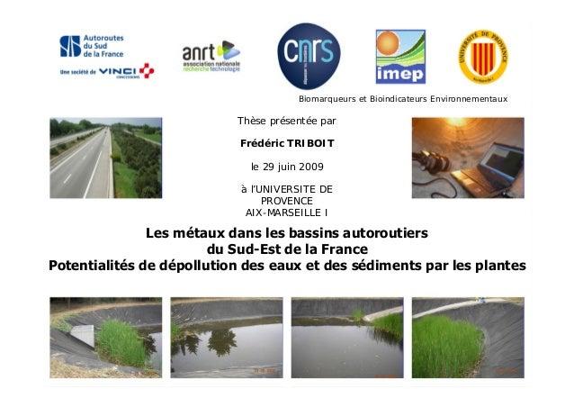 Thèse présentée par Frédéric TRIBOIT le 29 juin 2009 à l'UNIVERSITE DE PROVENCE AIX-MARSEILLE I Les métaux dans les bassin...