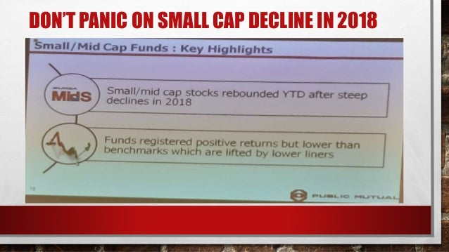 DOMESTIC EQUITY FUNDS - CONVENTIONAL