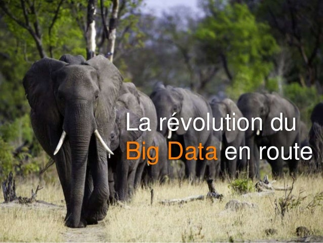 La révolution du Big Data en route