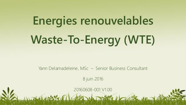 Energies renouvelables Waste-To-Energy (WTE) Yann Delamadeleine, MSc – Senior Business Consultant 8 juin 2016 20160608-001...