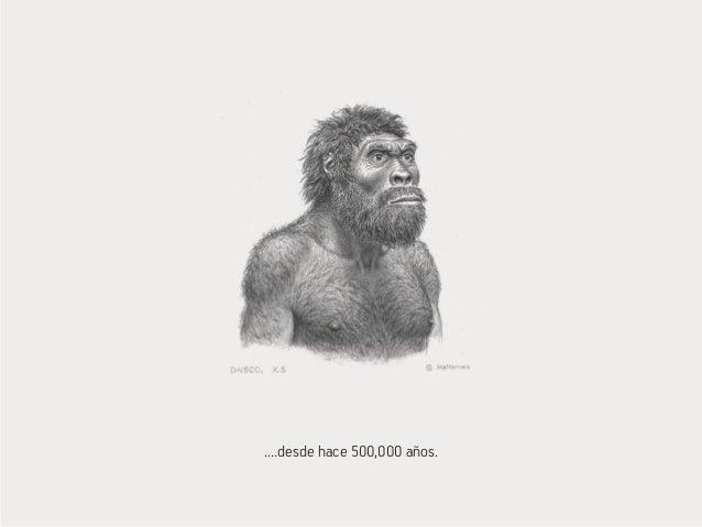 ....desde hace 500,000 años.