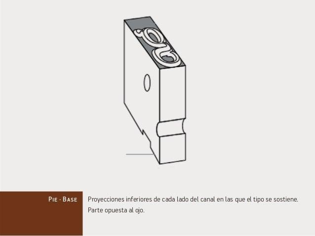 Pie · Base Proyecciones inferiores de cada lado del canal en las que el tipo se sostiene.  Parte opuesta al ojo.