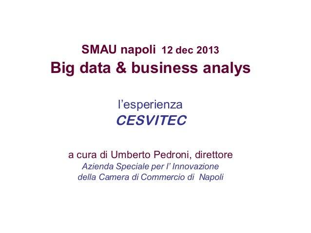 SMAU napoli 12 dec 2013  Big data & business analys l'esperienza  CESVITEC a cura di Umberto Pedroni, direttore Azienda Sp...