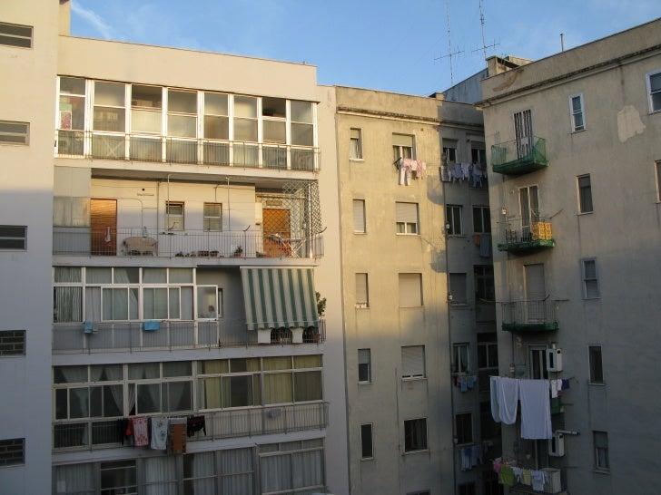 Windows in the urban jungle