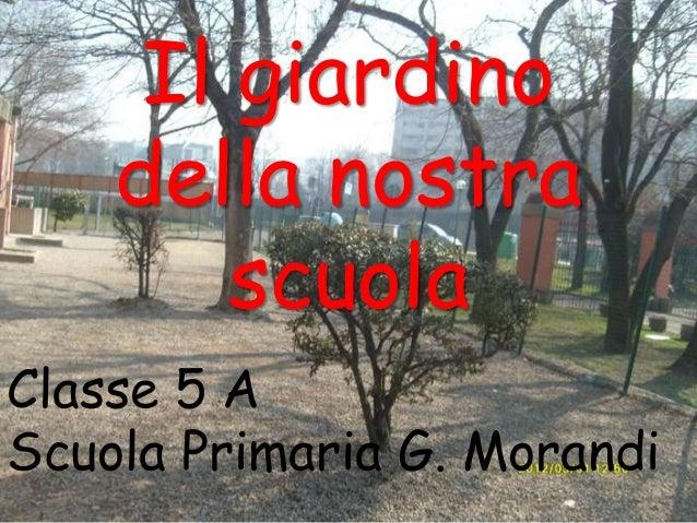 Il giardino della nostra scuola Classe 5 A Scuola Primaria G. Morandi