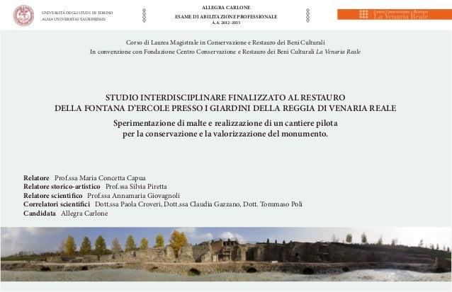 UNIVERSITÁ DEGLI STUDI DI TORINO ALMA UNIVERSITAS TAURINENSIS  ALLEGRA CARLONE ESAME DI ABILITAZIONE PROFESSIONALE A.A. 20...