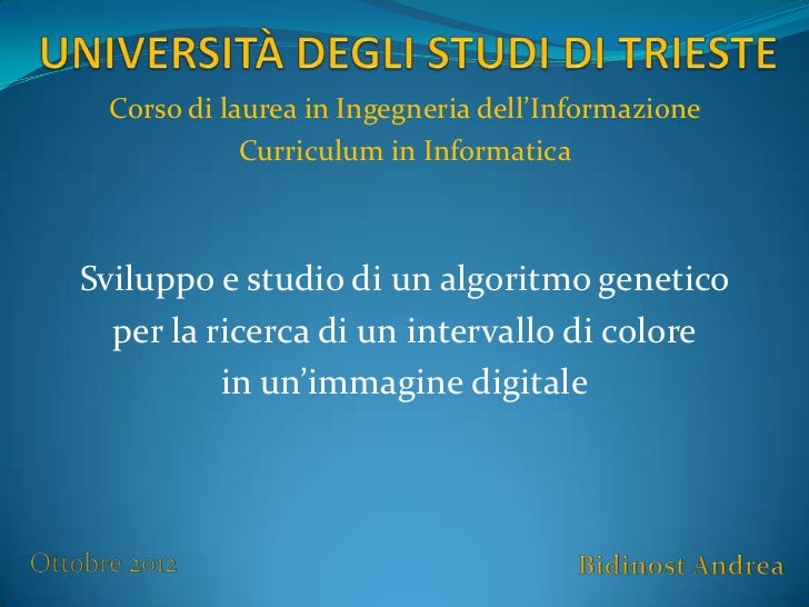 Corso di laurea in Ingegneria dell'Informazione            Curriculum in InformaticaSviluppo e studio di un algoritmo gene...