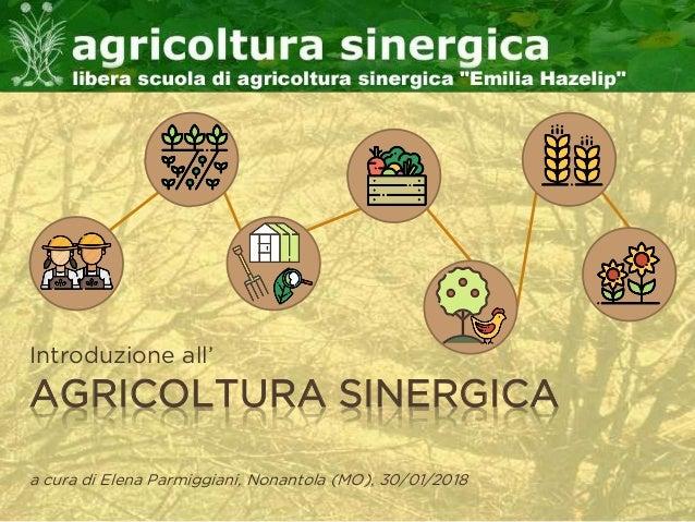 AGRICOLTURA SINERGICA Introduzione all' a cura di Elena Parmiggiani, Nonantola (MO), 30/01/2018