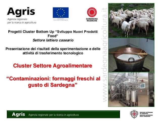"""Cluster Settore Agroalimentare """"Contaminazioni: formaggi freschi al gusto di Sardegna"""" Progetti Cluster Bottom Up """"Svilupp..."""