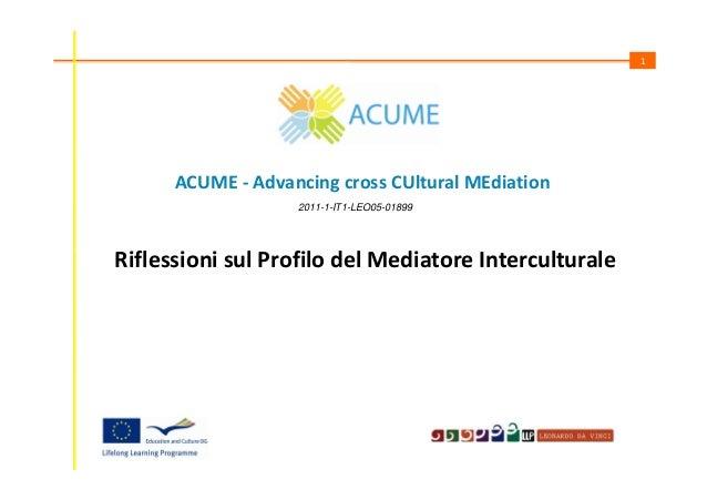 1  ACUME - Advancing cross CUltural MEdiation 2011-1-IT1-LEO05-01899  Riflessioni sul Profilo del Mediatore Interculturale