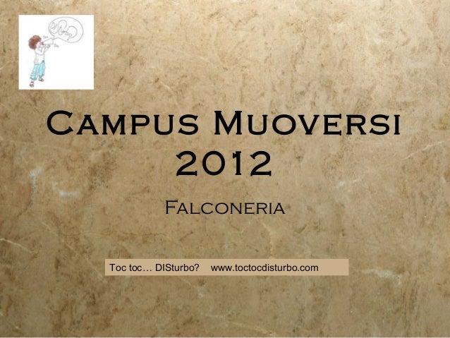 Campus Muoversi2012FalconeriaToc toc… DISturbo? www.toctocdisturbo.com