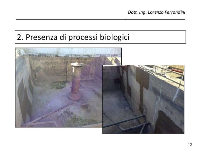 12 2. Presenza di processi biologici Dott. Ing. Lorenzo Ferrandini _______________________________________________________...